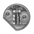 Комплект галогенных ламп H1 Argentum +80% 2шт.
